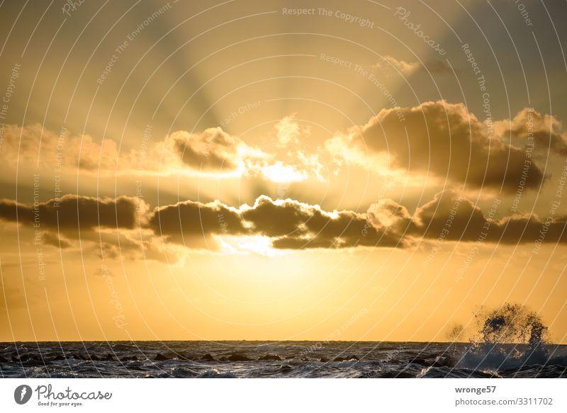 Abendsonne mit Wellenspritzer rechts Natur Landschaft Luft Wasser Himmel Wolken Sonne Sonnenaufgang Sonnenuntergang Sonnenlicht Herbst Schönes Wetter Ostsee