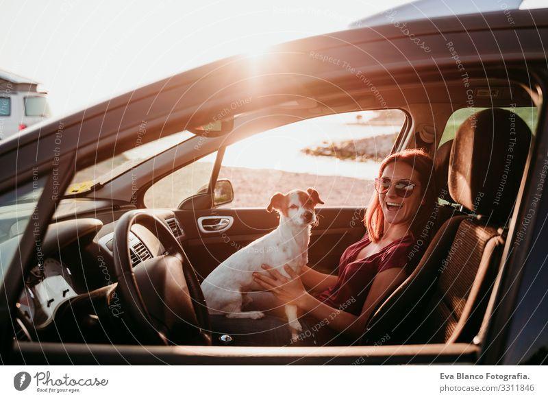 glückliche junge frau und ihr süßer jack russell hund im auto bei sonnenuntergang. reisekonzept Frau Hund PKW Sonnenuntergang Liebe Zusammensein
