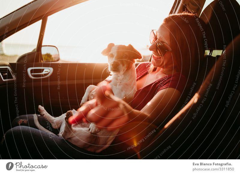 junge frau und ihr süßer jack russell hund im auto bei sonnenuntergang. reisekonzept Frau Hund PKW Sonnenuntergang Liebe Zusammensein Jack-Russell-Terrier