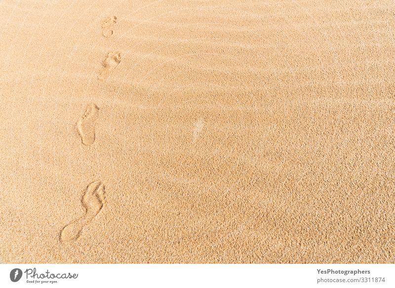 Fußabdrücke auf Sand. Spaziergang am Strand. Wandern in der Wüste Erholung Ferien & Urlaub & Reisen Ausflug Freiheit Sommer wandern Natur Klimawandel
