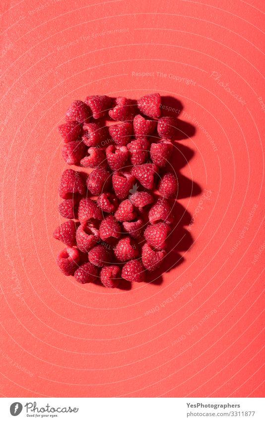 Frische Himbeeren auf einem roten Tisch. Rote Beeren im Sonnenlicht Frucht Gesunde Ernährung frisch obere Ansicht Hintergrund Korallenfarbe Diätnahrung
