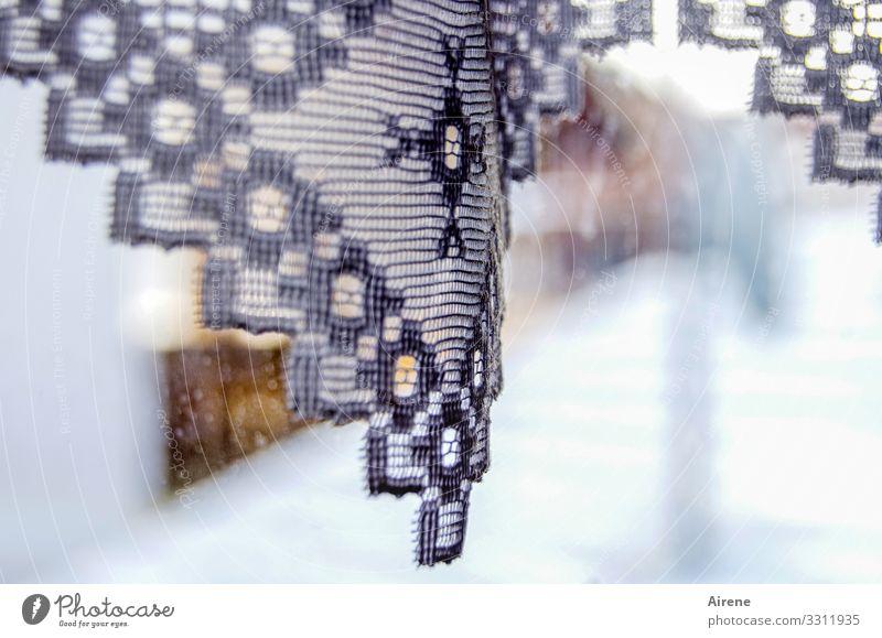 wenn's draußen schneit... Vorhang grau weiß Spitze Gardine Muster Dekoration & Verzierung zart hell Schnee Schneefall Winter Schönes Wetter Durchblick