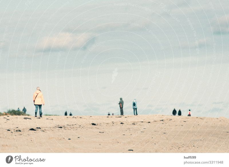 herbstlicher Strandspaziergang an der Nordsee Spaziergang wandern Mensch Erwachsene Menschengruppe Himmel Wolken Horizont Herbst Winter Wetter schlechtes Wetter