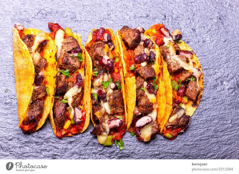 Tacos mit Rindfleisch Fleisch Käse Gemüse Mittagessen Abendessen Teller Holz authentisch frisch lecker Geschwindigkeit gelb Snack Koriander gemahlen Füllung