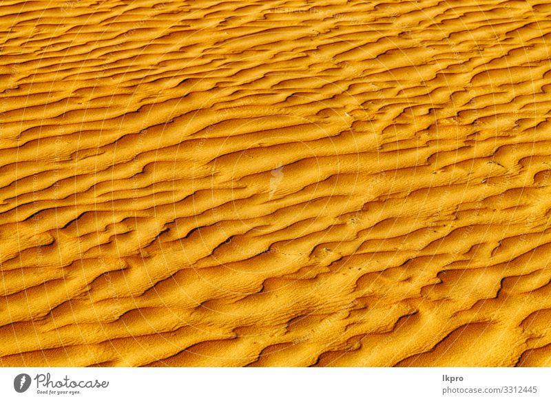 im oman die alte wüste und das leere viertel abstrakt Design Sommer Strand Meer Umwelt Natur Erde Sand Klima Wetter Dürre Küste heiß braun gelb grau schwarz