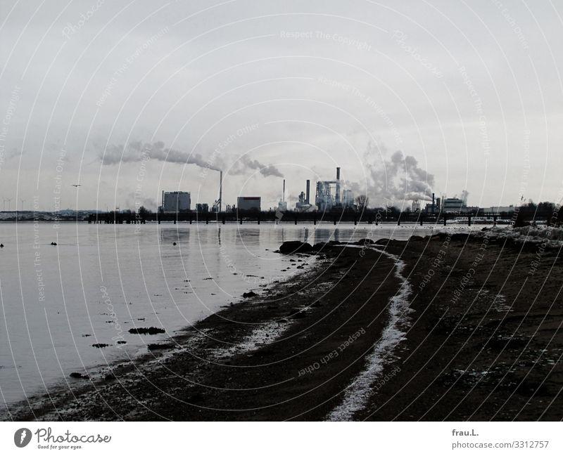 Wismar Ferien & Urlaub & Reisen Ausflug Städtereise Strand Meer Winter Schnee Küste Bucht Ostsee Industrieanlage Hafen Arbeit & Erwerbstätigkeit Rauchen trist