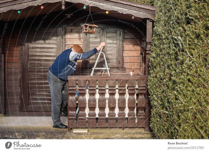 Alter Mann an Leiter Mensch alt blau grün Leben Senior Garten braun grau Häusliches Leben Wohnung Zufriedenheit maskulin 60 und älter stehen