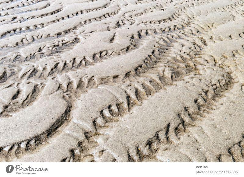 Muster mit Zacken im Sand Umwelt Natur Landschaft Erde Klima Wellen Küste Nordsee Linie braun Ebbe Hintergrundbild xenias Gedeckte Farben Detailaufnahme