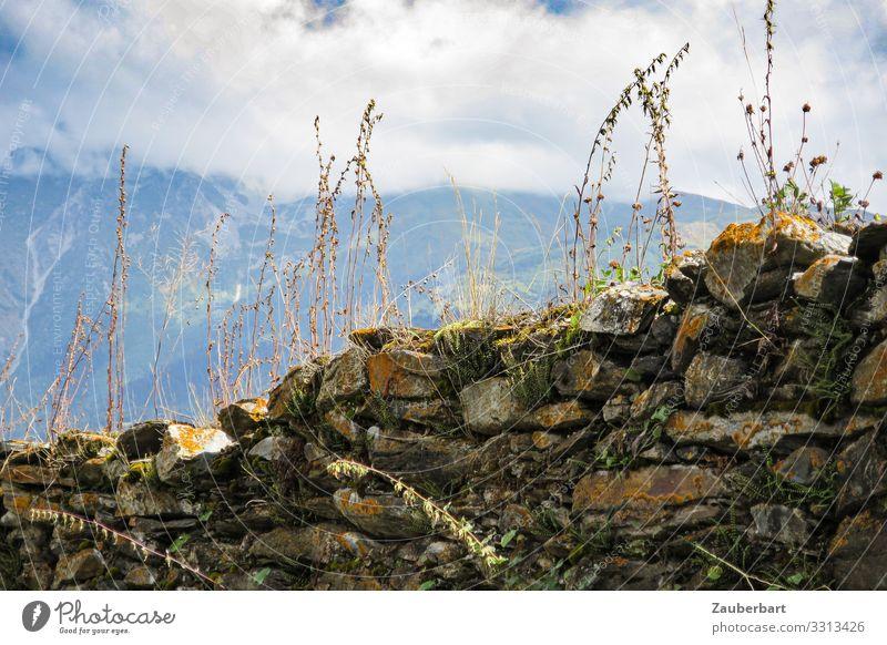 Bewachsene Steinmauer in den Bergen Ferien & Urlaub & Reisen Sommer Berge u. Gebirge wandern Natur Landschaft Wolken Pflanze Sträucher Kaukasus Swanetien