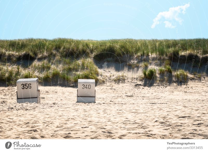 Strandkörbe am Strand und Grasdünen auf der Insel Sylt Erholung Sommer Sommerurlaub Sand Küste Nordsee heiß Friesische Insel Deutscher Strand Deutschland
