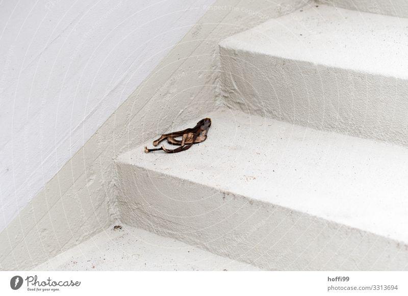 alte Bananenschale auf weißer Treppe Gebäude Mauer Wand Fassade Stein bedrohlich Ekel hässlich kaputt Verantwortung Entsetzen Verzweiflung Übermut bequem