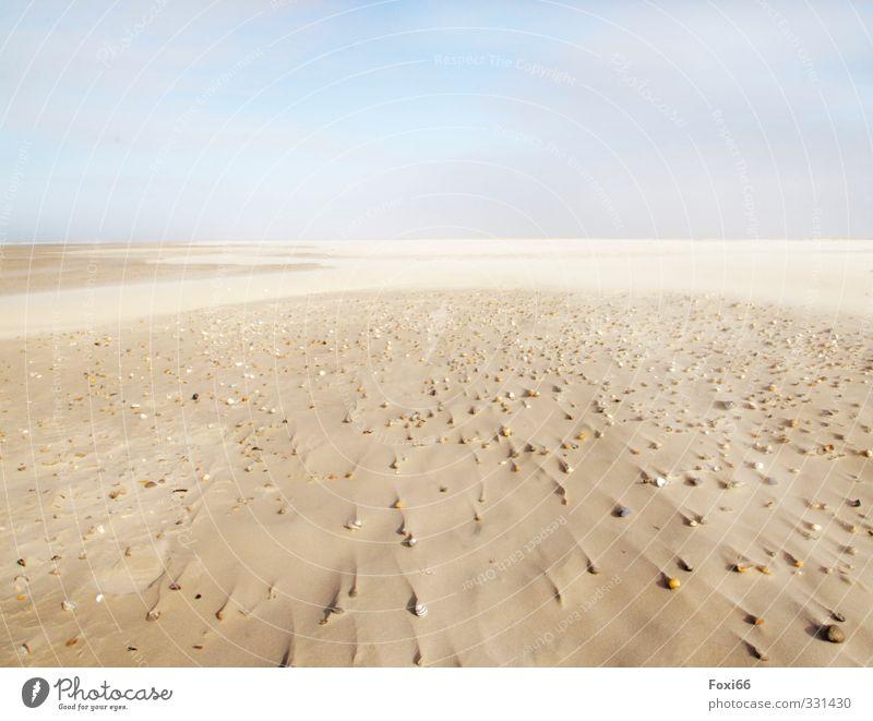 Spuren im Sand harmonisch Erholung ruhig Meditation Ferne Strand Meer Insel Urelemente Wasser Himmel Wolken Frühling Wind Küste Nordsee Muschel Stein
