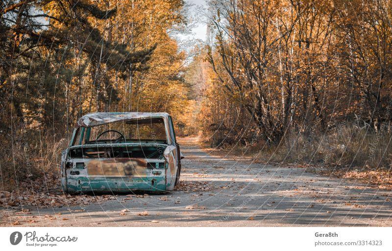 Straße mit einem kaputten Auto in Tschernobyl Ukraine Ferien & Urlaub & Reisen Tourismus Ausflug Pflanze Himmel Herbst Baum Blatt Verkehr PKW Rost alt