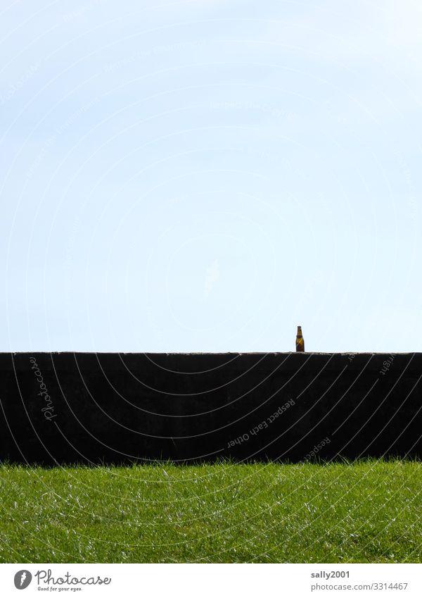 Rest vom Fest... Getränk Flasche Bierflasche Gras Wiese Mauer Wand stehen Endzeitstimmung kalt Sucht Vergänglichkeit leer Einsamkeit vergessen Müll Pfandflasche