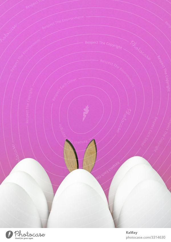 Versteckt Design Dekoration & Verzierung Feste & Feiern Ostern Frühling Hase & Kaninchen Hasenohren Ohr lustig niedlich rosa weiß Einsamkeit Tradition