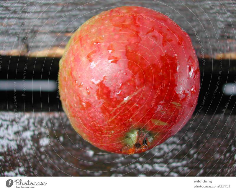 appel on terras Gesundheit fruit appelboom buiten rond