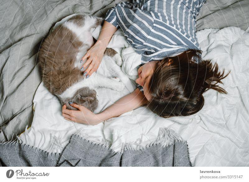 Frau liegt auf einem Bett mit ihrer britischen Rassekatze annehmen reizvoll Tier Britische Rasse Pflege Katze niedlich heimisch weich fluffig flockig Pelzmantel