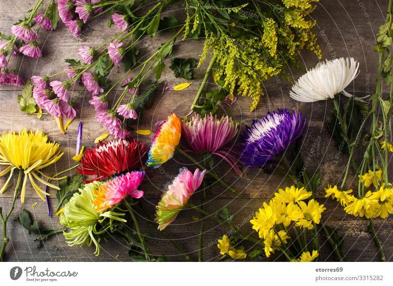 Vielfalt an bunten Frühlingsblumen auf Holztisch. Blume Natur rosa mehrfarbig Varieté sortiert Garten Sommer Pflanze Blüte geblümt Muttertag Valentinstag