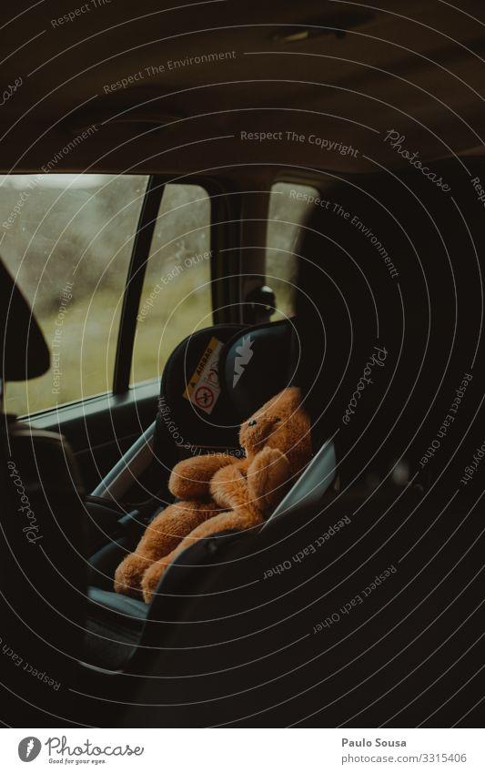 Ferien & Urlaub & Reisen Lifestyle lustig Bewegung Verkehr Kreativität authentisch Sicherheit Spielzeug Mobilität Fahrzeug Verkehrsmittel Originalität Teddybär