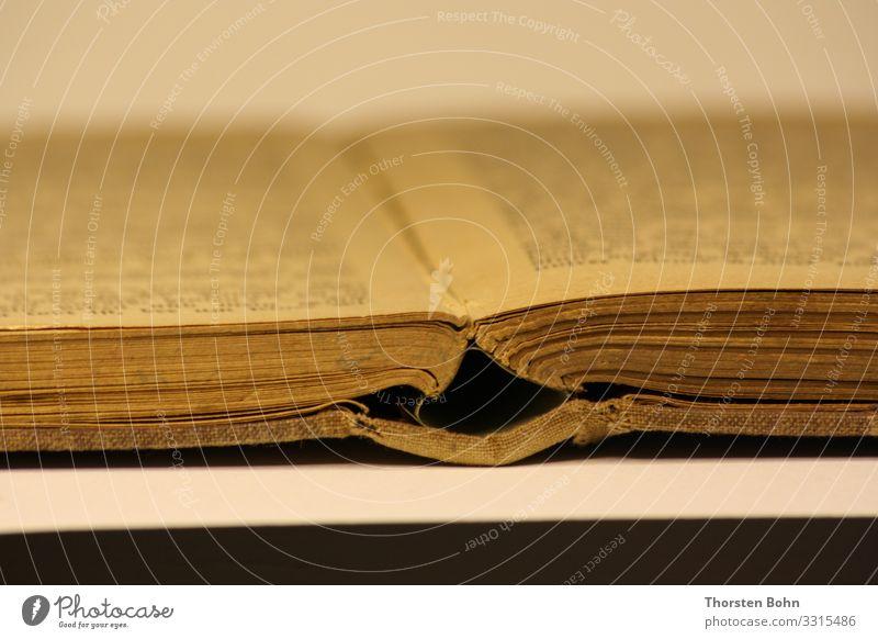 Märchenbuch 19. Jahrhundert / 19th Century Fairy Tale Book lesen Kindererziehung Bildung Wissenschaften Erwachsenenbildung Kindergarten lernen Schüler Lehrer