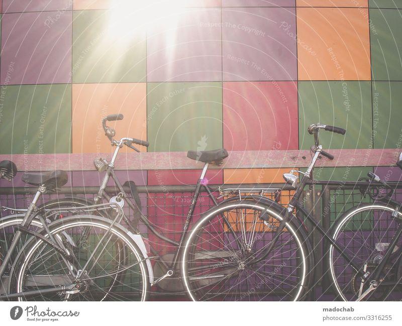 Hollandrad Verkehr Verkehrsmittel Verkehrswege Personenverkehr Straßenverkehr Fahrradfahren Lebensfreude Frühlingsgefühle Romantik vernünftig Zukunftsangst