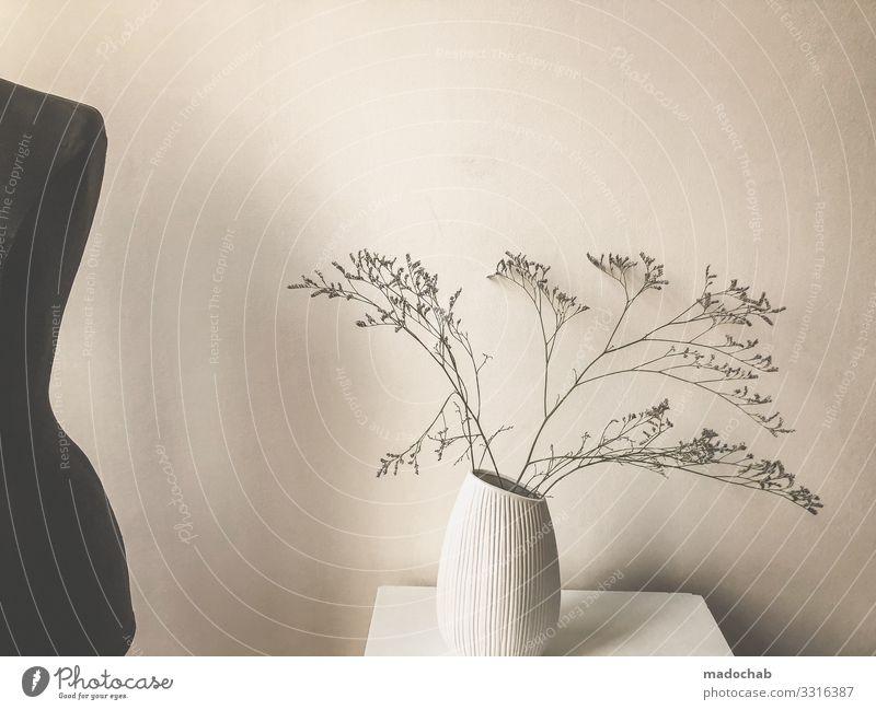 Floraler Morgen Pflanze schön Blume Erholung Lifestyle Innenarchitektur Stil Häusliches Leben Design Wohnung Zufriedenheit Dekoration & Verzierung Körper