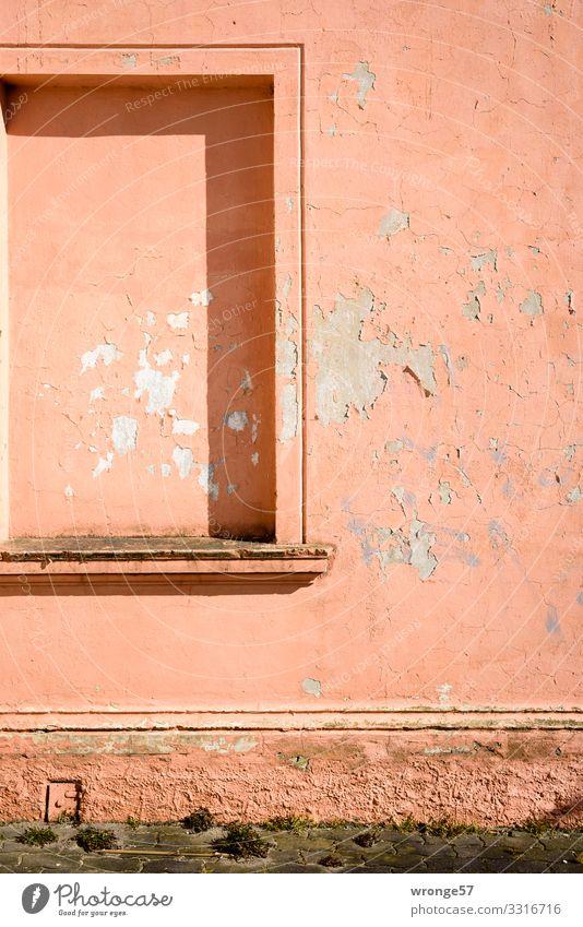 Fassade mit Geschichte Sassnitz Deutschland Europa Altstadt Menschenleer Haus Mauer Wand Fenster alt Stadt rosa Vergänglichkeit Häusliches Leben Fenstersims