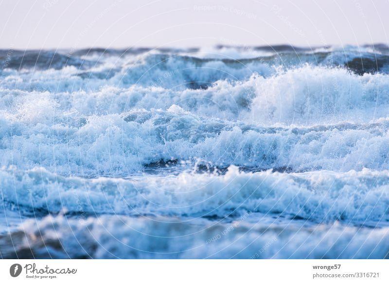Wellenberge vor Wustrow Natur Urelemente Luft Wasser Himmel Herbst Unwetter Sturm Ostsee toben bedrohlich wild blau Wellenform Wellenkamm Wellenlinie Meer