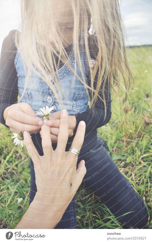 ring aus blümchen .. Kind Mädchen Kindheit Haare & Frisuren Wind Außenaufnahme Blume Blumenwiese Gänseblümchen Margerite Kamille Wiesenblume Hand Finger Ring