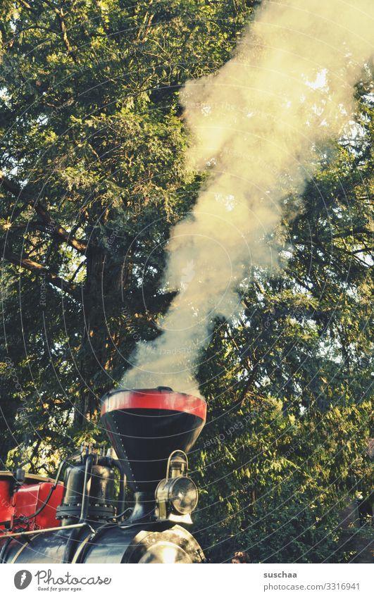 husch husch eisenbahn Eisenbahn Lokomotive Dampflokomotive historischer Zug Zugmaschine Wasserdampf Rauchwolke Triebfahrzeug Schienenfahrzeug Schornstein Baum