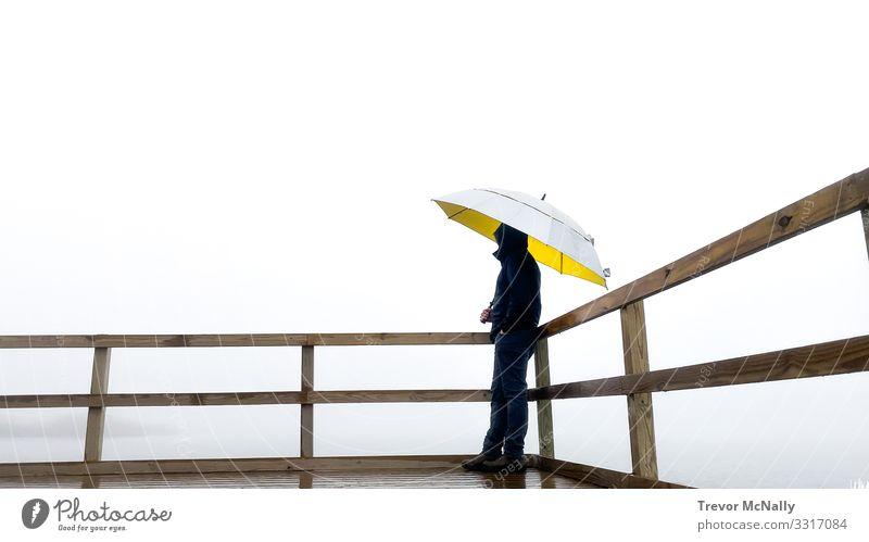 Nebelschleier erzeugt Klarheit des Geistes Abenteuer Ferne Freiheit Mann Erwachsene 1 Mensch 30-45 Jahre Urelemente Horizont Regen beobachten entdecken hören