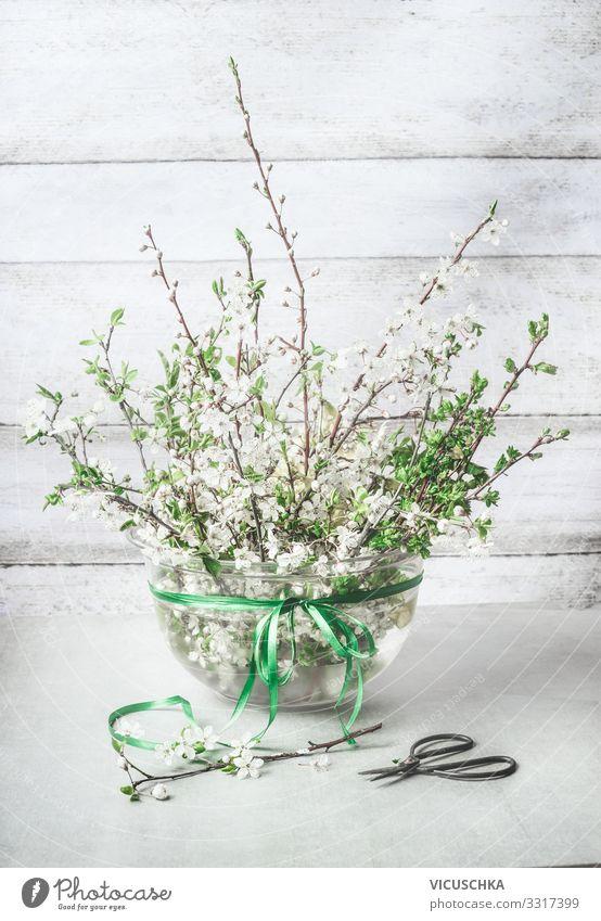 Frühling Deko. Kirschblüten Zweige Bündel im Vase Stil Design Häusliches Leben Pflanze Blatt Blüte Dekoration & Verzierung Blumenstrauß Schleife bunch cherry