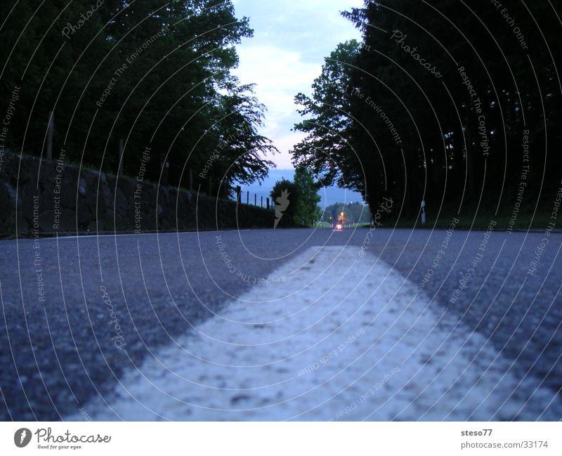 Strasse Nacht Verkehr Straße Fahrbahn Wald Autostreifen Autofrei