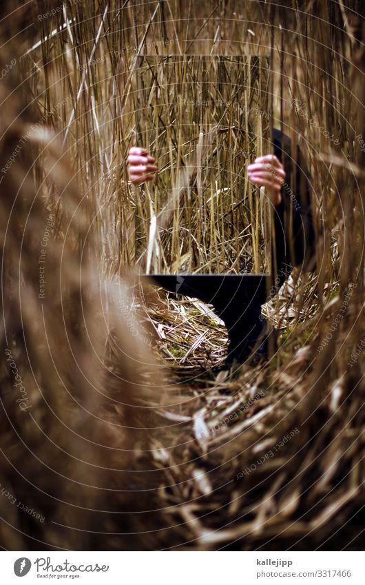 man behind the mirror Mensch maskulin Hand Finger 1 Spiegel hocken sitzen stoppen festhalten Schilfrohr verstecken Tarnung Spiegelbild Wege & Pfade Versteck