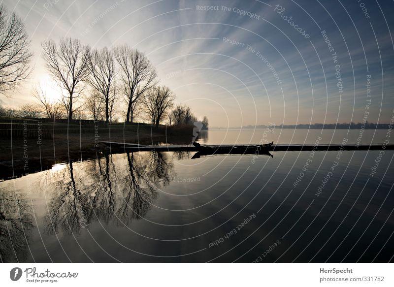 Morgens am Lago Himmel Natur blau weiß Baum Einsamkeit Landschaft Wolken ruhig Winter Umwelt Ferne grau Wasserfahrzeug Schönes Wetter Seeufer