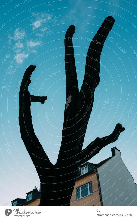 baumhaus Himmel Winter Schönes Wetter Baum Ast Haus Fassade bizarr einzigartig skurril karg kahl Baumstamm Baumstumpf Farbfoto Außenaufnahme Menschenleer Tag