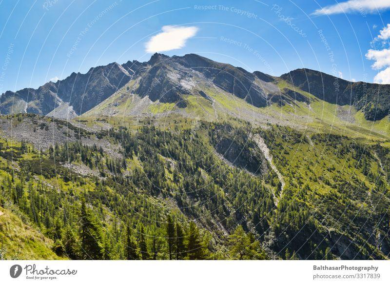 Bergpanorama (Österreich) Ferien & Urlaub & Reisen Tourismus Sommer Sommerurlaub Berge u. Gebirge wandern Umwelt Natur Landschaft Pflanze Himmel Schönes Wetter