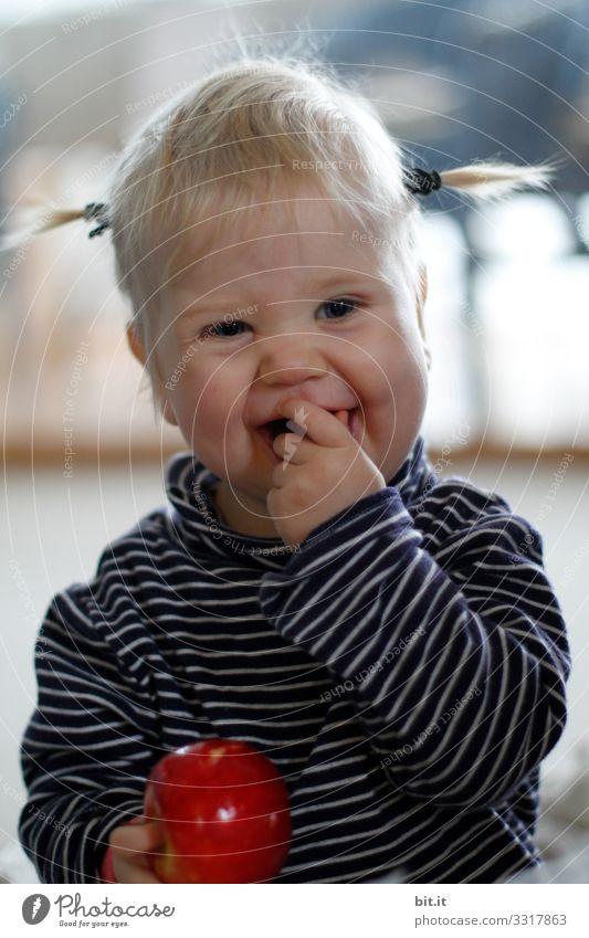 Süßes, niedliches Mädchen mit lustigen Zöpfen, freut sich über einen roten Apfel, welchen sie in der Hand hält. Kind mit Ringelshirt isst lachend ein Stück Apfel, welches sie in den Mund steckt.