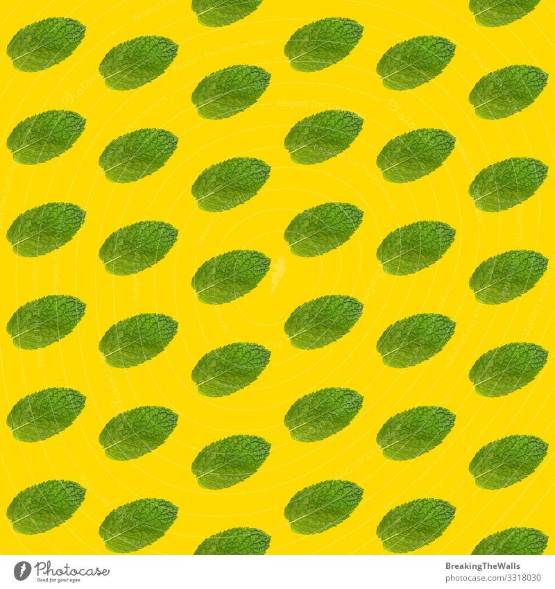 Nahtloses Muster von Minzeblättern auf gelbem Grund Lebensmittel Kräuter & Gewürze Ernährung Essen Bioprodukte Vegetarische Ernährung Design Alternativmedizin