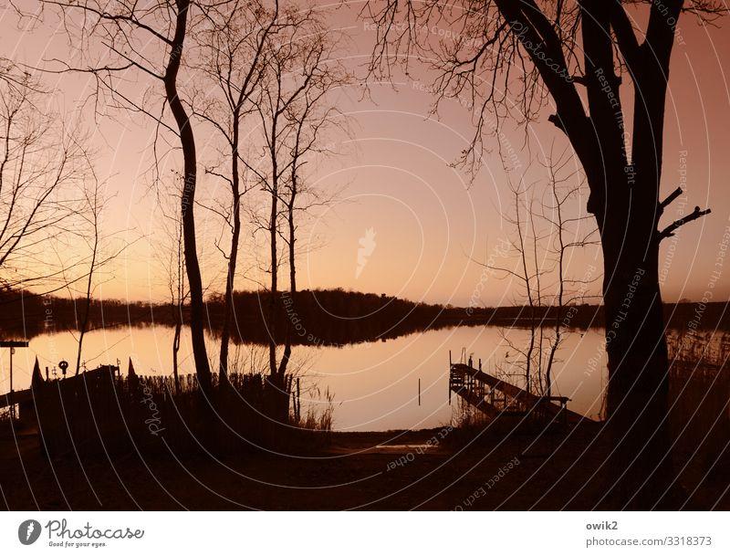Stillgelegt Umwelt Natur Landschaft Pflanze Luft Wasser Wolkenloser Himmel Horizont Schönes Wetter Baum Sträucher Wald Seeufer Teich ruhig Sehnsucht Fernweh
