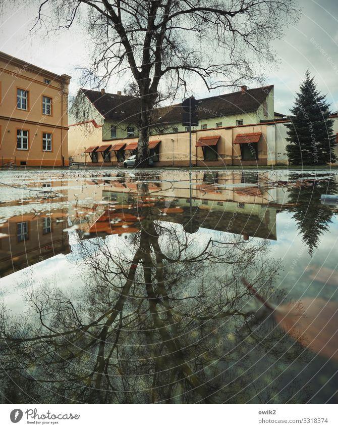 Doppeltes Spiel Wasser Wolken Baum Torgau Sachsen Deutschland Kleinstadt Stadtzentrum bevölkert Haus Gebäude Mauer Wand Fenster Dach Schornstein dunkel nass