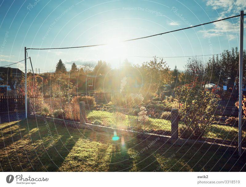Wird Zeit Himmel Natur Pflanze Landschaft Sonne Baum Wolken Ferne Herbst Umwelt Gras Garten hell Horizont leuchten Idylle