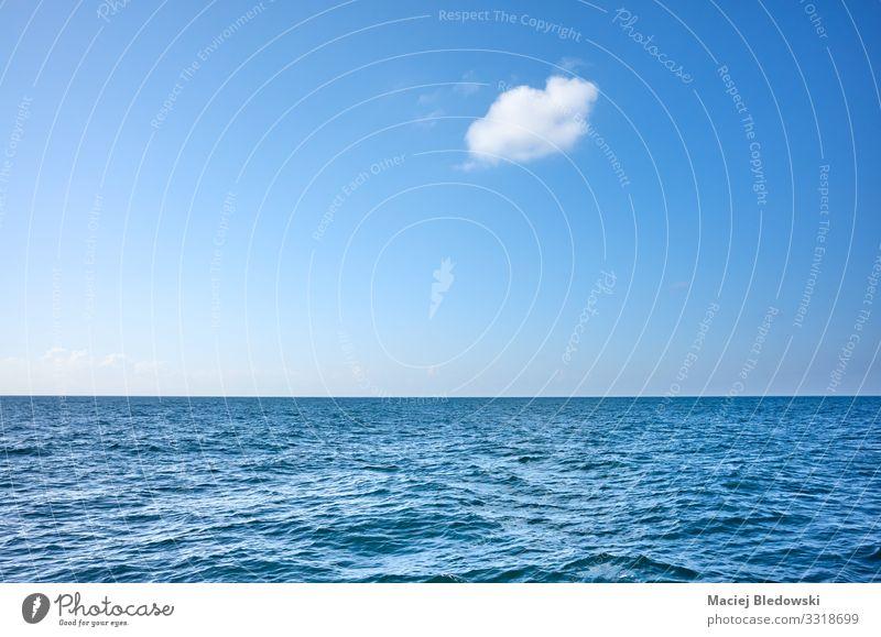 Einzelne Wolke über dem Ozean an einem sonnigen Tag Ferien & Urlaub & Reisen Ferne Freiheit Kreuzfahrt Sommer Sommerurlaub Sonne Meer Wellen Umwelt Natur Himmel