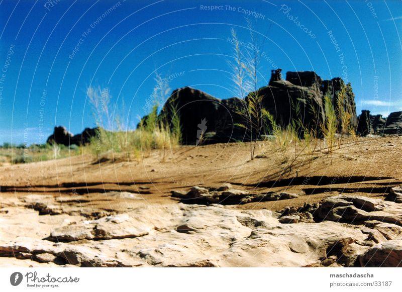 Nevada Gras Steppe ruhig Hügel Stein Wüste Landschaft Himmel USA Gesteinsformationen Menschenleer Vor hellem Hintergrund Blauer Himmel Wolkenloser Himmel