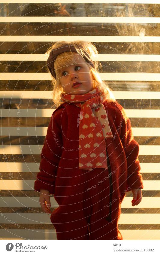 Model stehen. Mensch feminin Kind Kleinkind Mädchen Kindheit 1-3 Jahre beobachten Blick leuchten Stimmung Freude Zufriedenheit Coolness Schal Stirnband