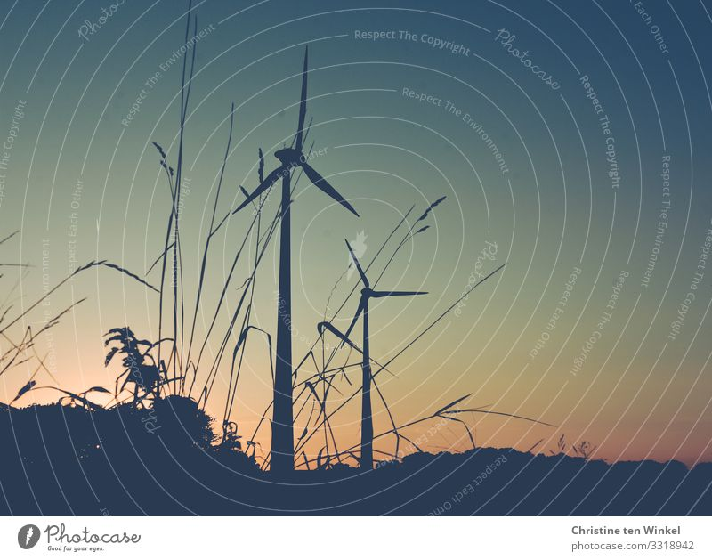Windkraftanlagen in der Abenddämmerung Technik & Technologie Fortschritt Zukunft Energiewirtschaft Erneuerbare Energie Umwelt Natur Wolkenloser Himmel