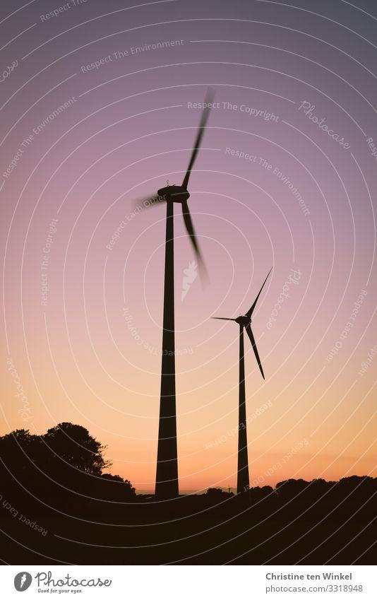 Windräder im Abendlicht Himmel schön Baum schwarz Umwelt außergewöhnlich orange rosa modern Energiewirtschaft Technik & Technologie ästhetisch Perspektive