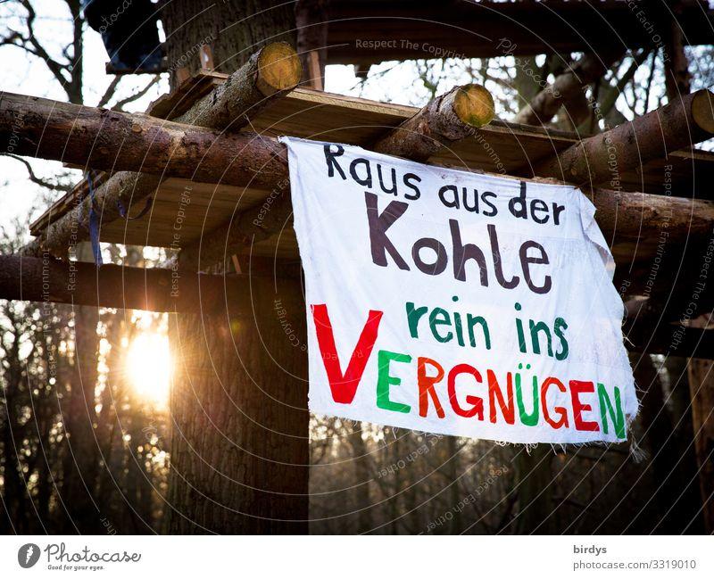 Beste Grüße nach Davos Sonne Winter Klimawandel Schönes Wetter Baum Wald Hambacher Forst Baumhaus Transparente Holz Schriftzeichen glänzend Kommunizieren