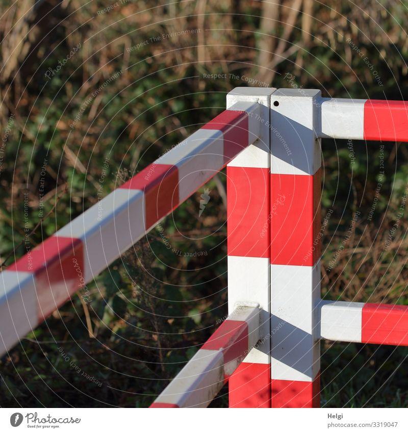 Absperrung einer Gefahrenstelle am Bahnübergang Sträucher Verkehrswege Wege & Pfade Metall stehen authentisch außergewöhnlich eckig einzigartig braun rot weiß