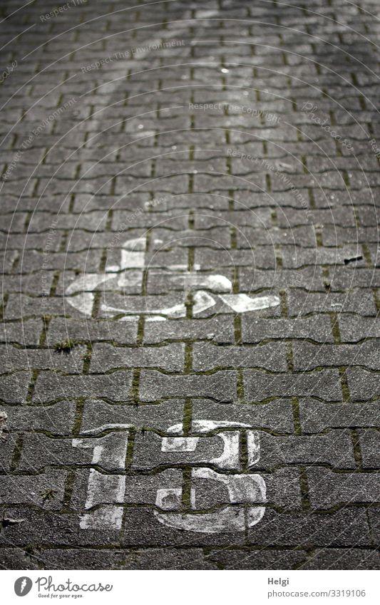 Rollstuhl und Zahl 13 auf Pflastersteinen Parkplatz Spuren Stein Zeichen Ziffern & Zahlen Kommunizieren einfach einzigartig grau weiß Sicherheit Menschlichkeit